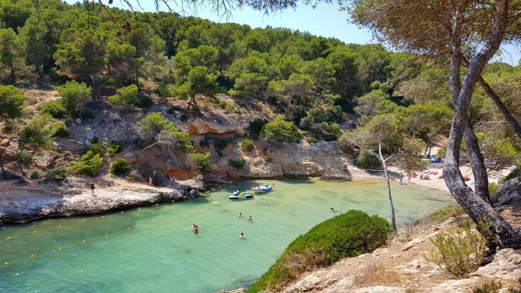 Med bil på Mallorca kommer du lett til Cala Falco
