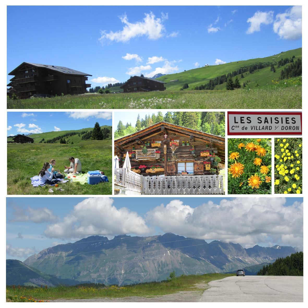 Piknik på bilferie i franske alper