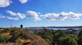 Skogsstier på Bystien i Larvik