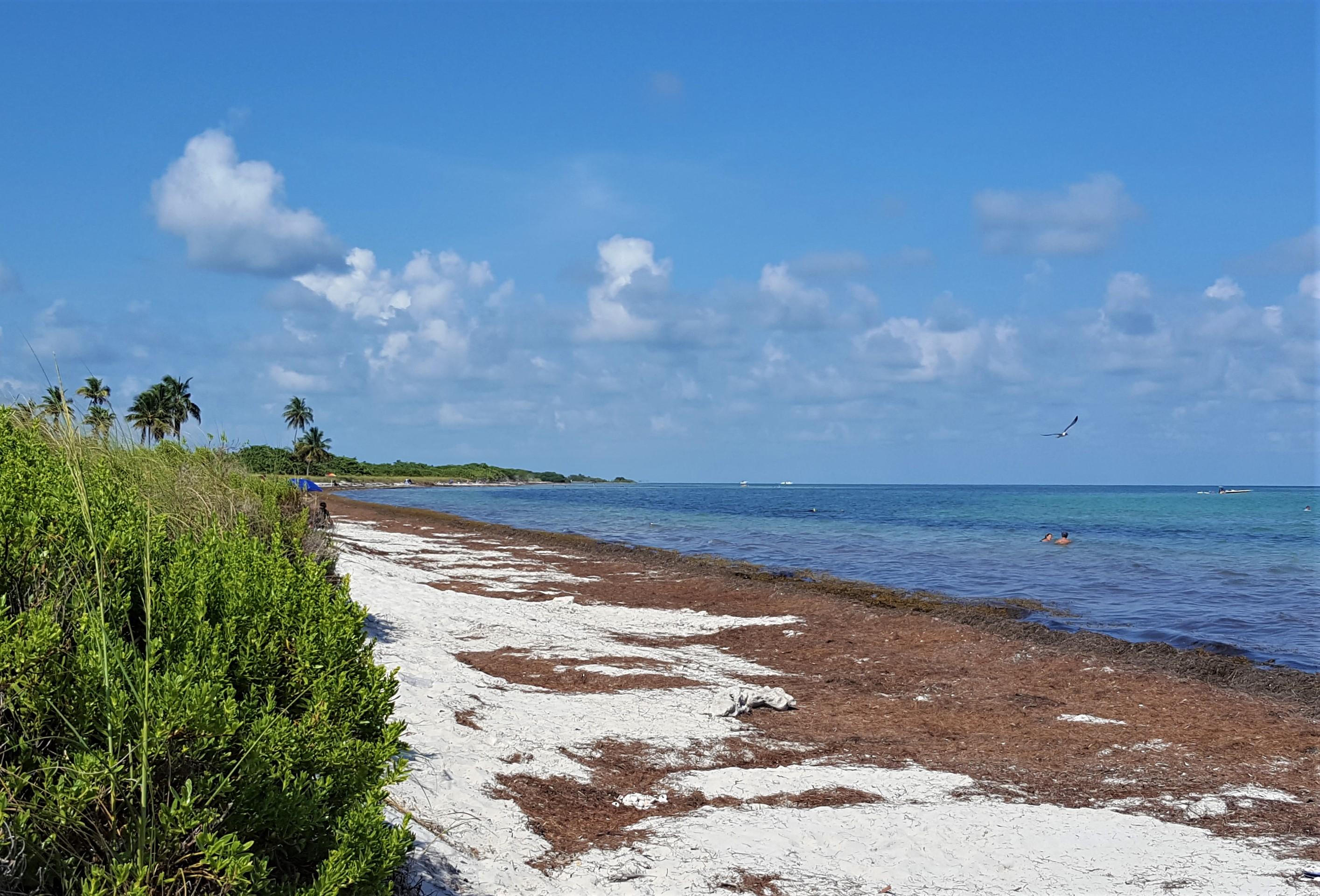 Bahia Honda på Bilferie Florida Keys