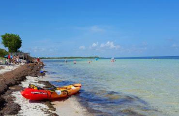 Paradisstrand i Florida Keyes