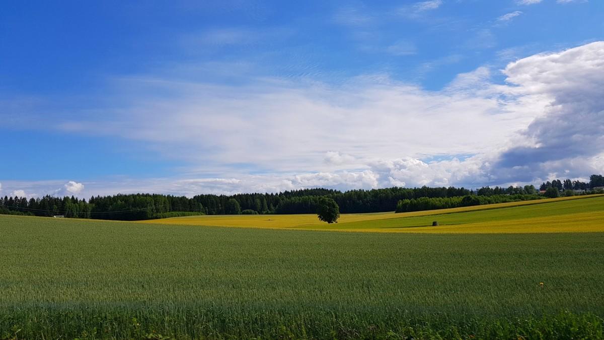 Jordene på Østlandet