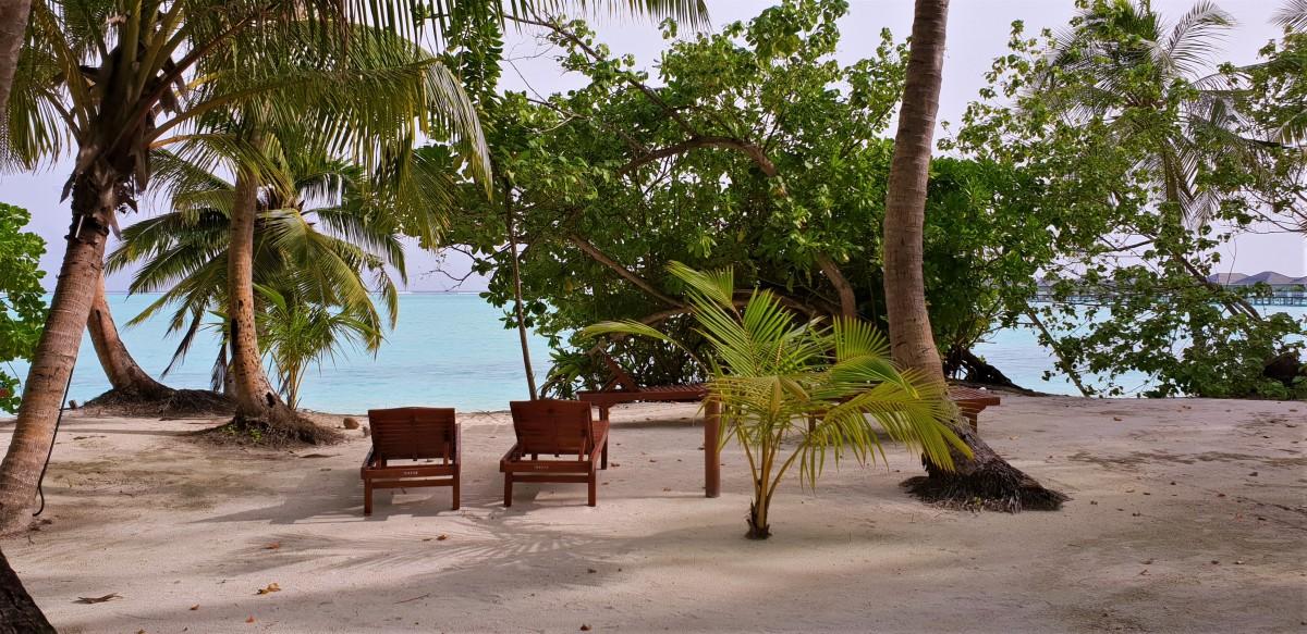 Bungalov på stranden på Sun Island Resort