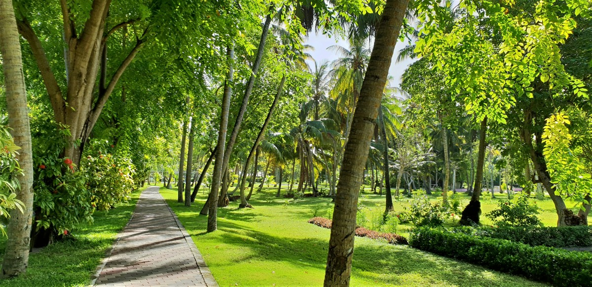 Parkområdet på Sun Island, Maldivene
