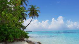10 grunner til å reise til Maldivene