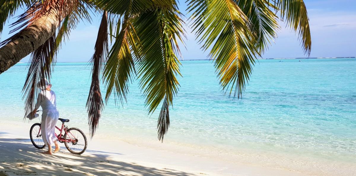 Palme og strand på Maldivene