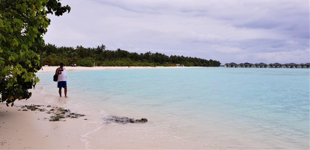 Paradisstran på Sun Island Resort, Maldivene