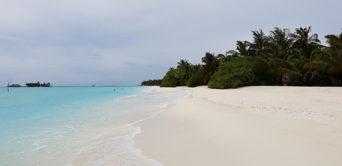 Tropisk paradisstrand Sun Island Resort, Maldivene
