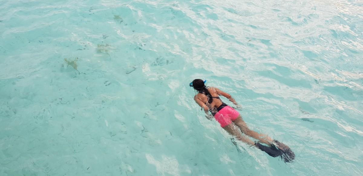 Snorkling i det krystallklare vannet på Sun Island, Maldivene
