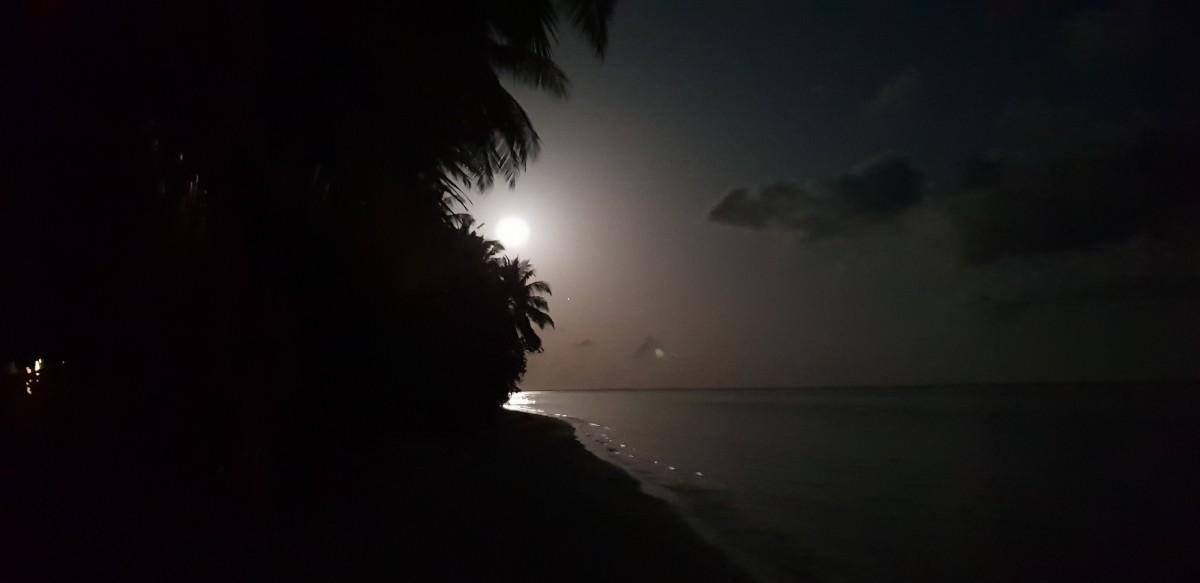 Måneskinn Sun Island Resort Maldivene