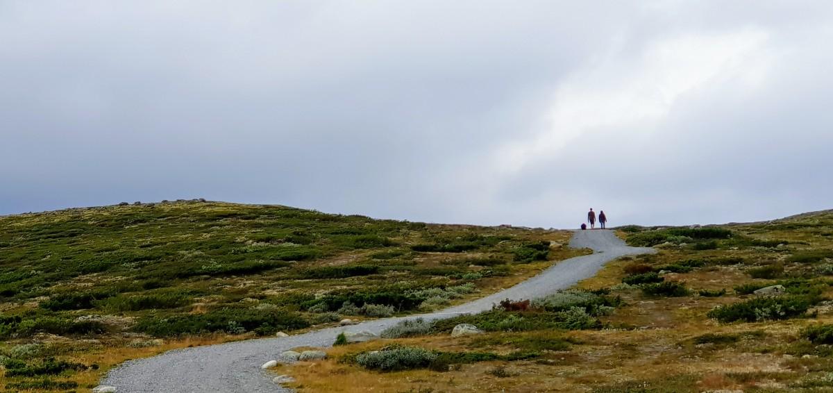 Viewpoint Snøhetta - stopp på bilferie over Dovre