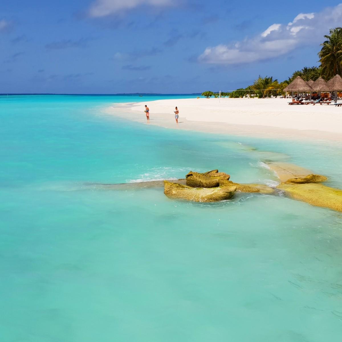 Stranden på Sun Island Resort, Maldivene