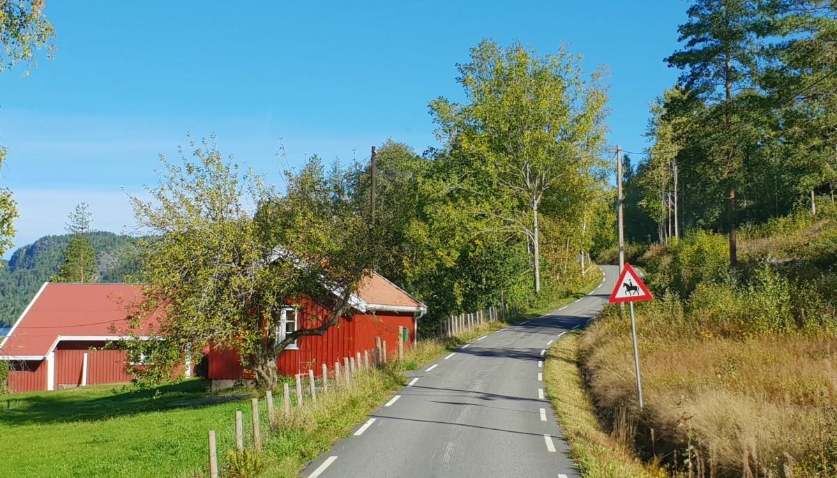 Fricamping på Roppestad - smale gater
