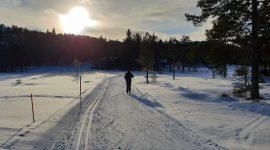 Skitur for pingler på Gautefall