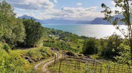 Vakre Hardanger – et lite stykke Norge
